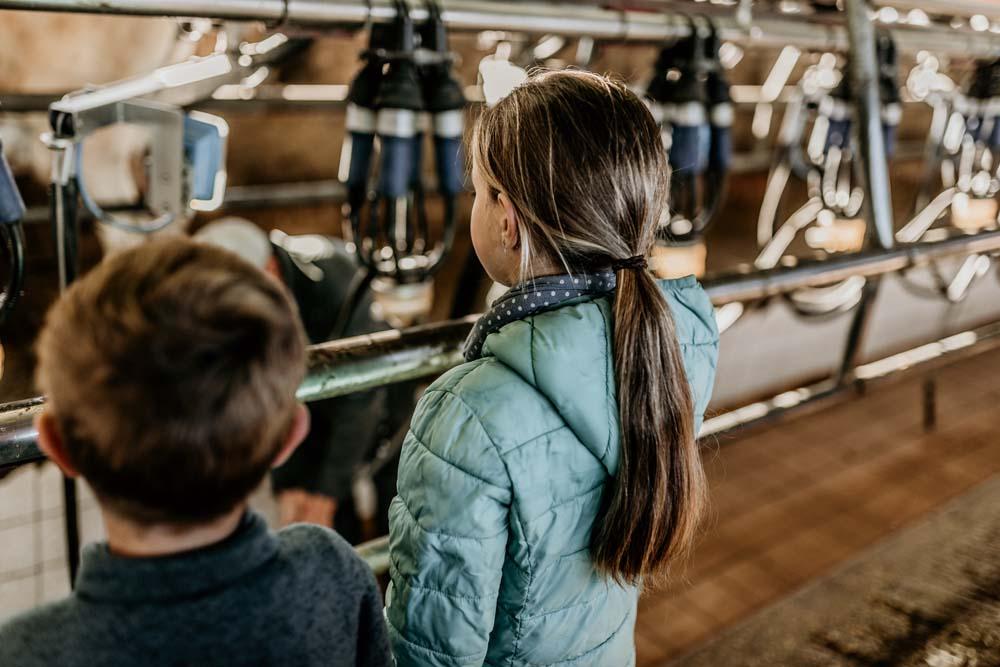Oakhurst Farm Dairy visits
